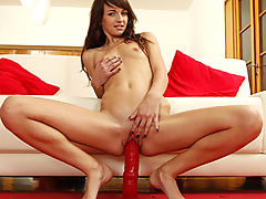 Aimee Ryan's Challenging Vibrator Experience